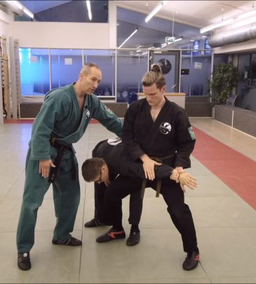 1. VIDEO-KURS KEMPO Weiß-Gurt